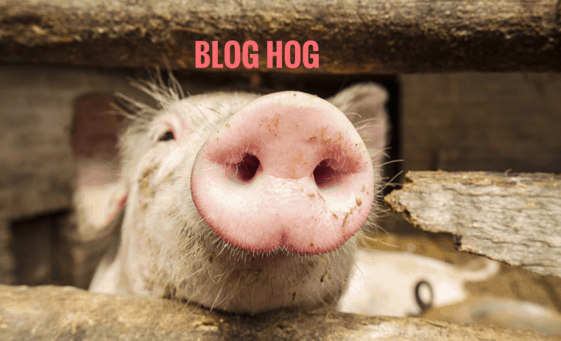 Blog Hog by writemixforbusiness.com