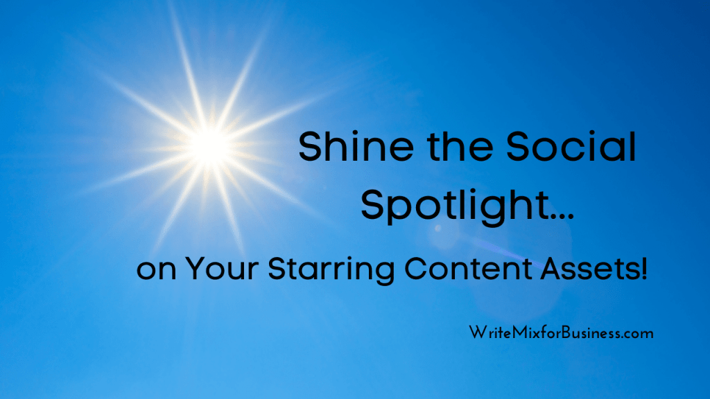 Social Savvy for Social Media Marketing, visual three with the text: Shine the Social Spotlight on Your Starring Content Assets.