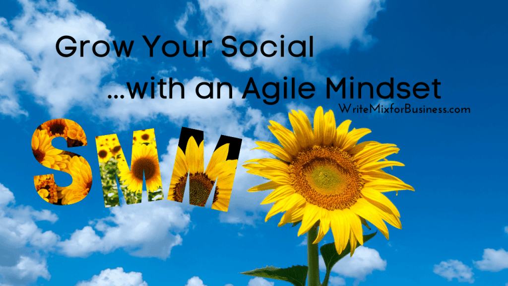 Find Strategic Social Savvy for Social Media Marketing, visual four, with the text: Grow Your Social...with an Agile Mindset.